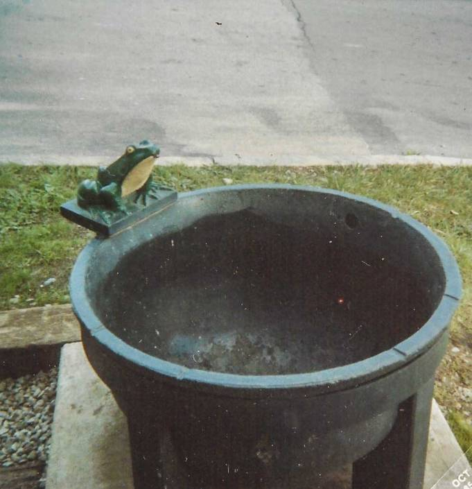 Frog Fountain 1985 | Little Falls Historical Society Museum